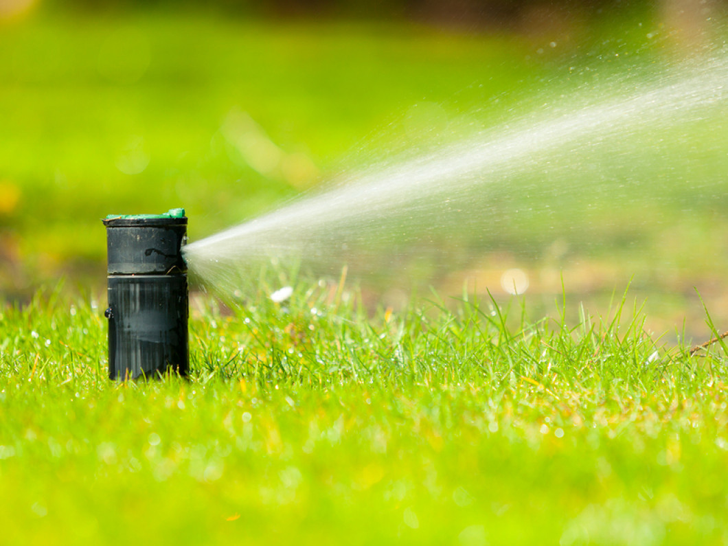 Quench Your Thirsty Lawn
